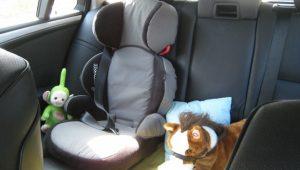 sjedalica u autu 004