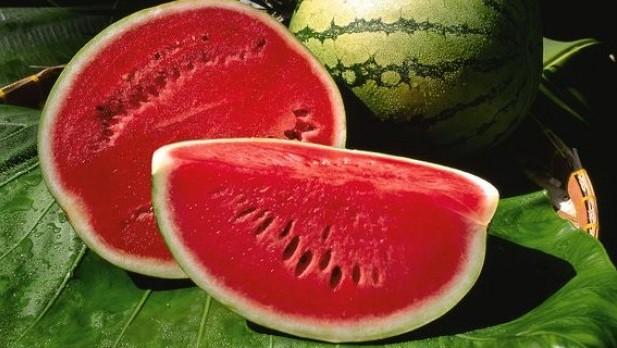 watermelon-sliced_10330_600x450[1]