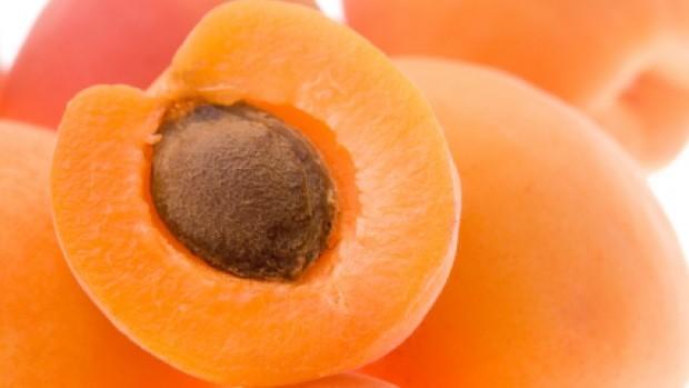 apricot[1]