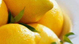lemon-detox-lemon-ice-cubes-650x280