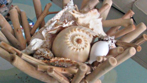 dekoracija za stol od školjki