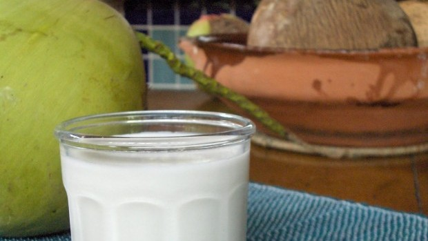 coconutmilk033