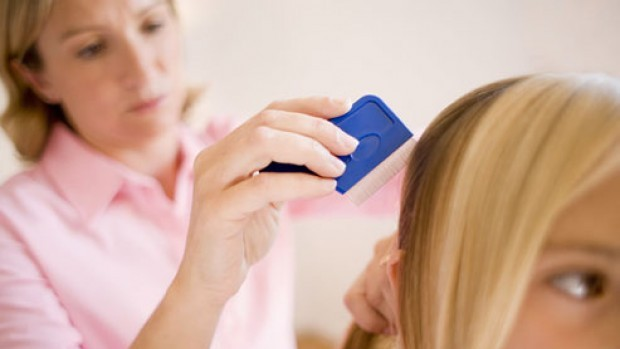 photolibrary_rf_photo_of_combing_lice_from_hair