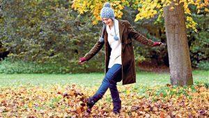 autumnleaves_2360969b