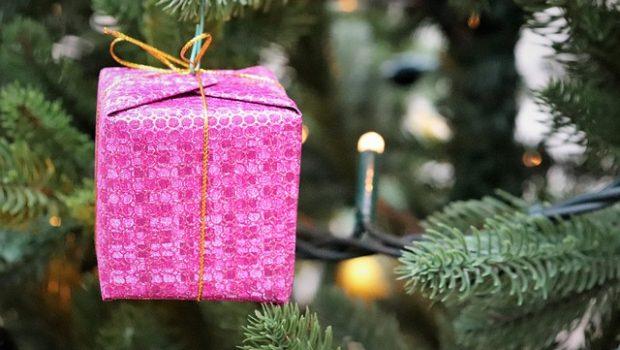 christmas-tree-3886709_640