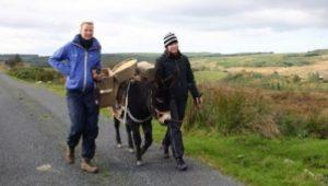 donkey-walking-bog-300x236