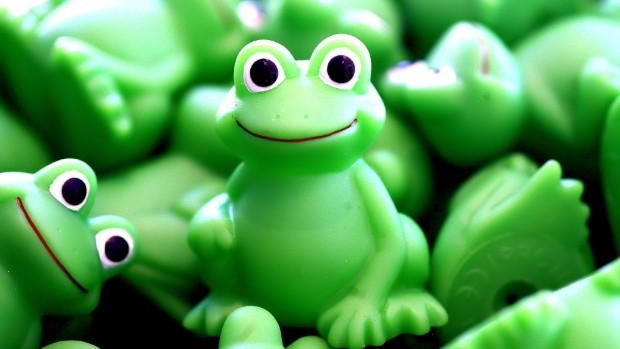 green-frogs