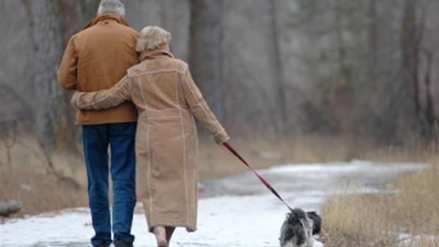 old-couple-walking-dog_thumbnail1