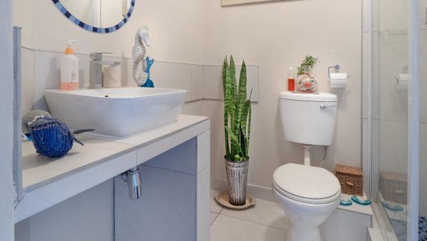 bathroom-3501553_1920