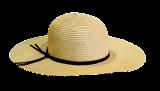 hat-1625676_640