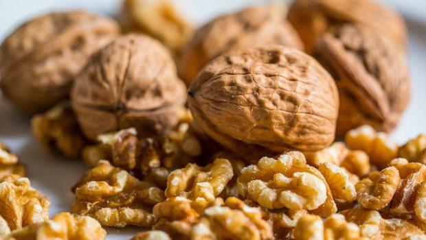 walnut-2816934_1920